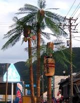提灯夜市名物「ヤシの木」
