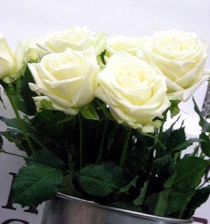 父の日に薔薇を贈ろう