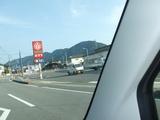 車窓からポプラ