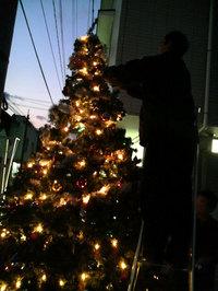 大型クリスマスツリー