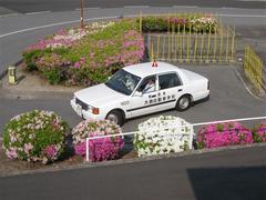 大島自動車学校