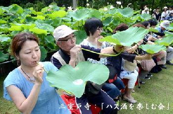 三室戸寺:「ハスの葉を杯にして茎から酒を飲む「蓮蓮酒を楽しむ会」