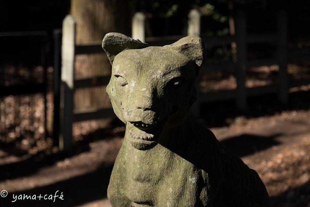 20160113宝登山-38-2
