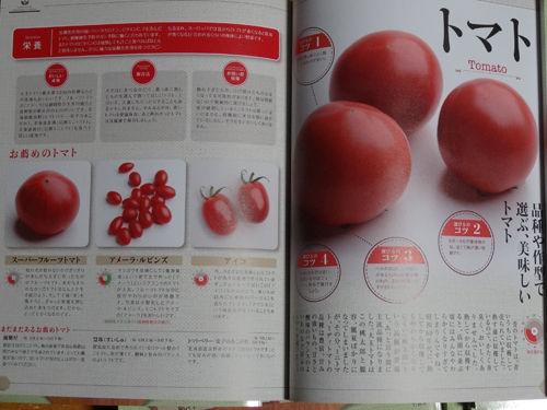 旬の野菜見本誌2