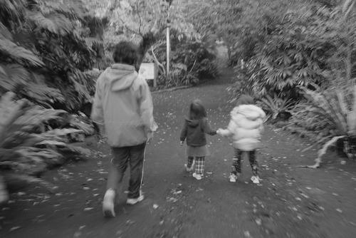 植物公園散歩
