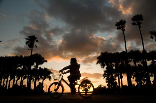 自転車夕日