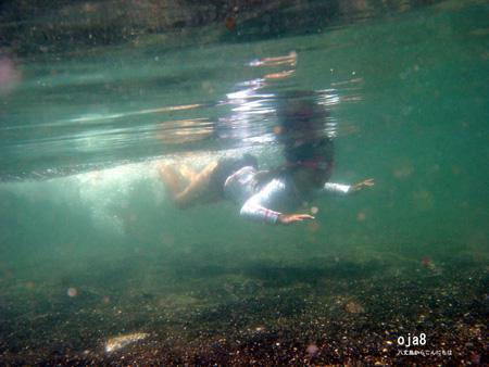 泳ぐいっちー