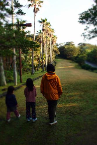 植物公園散歩6