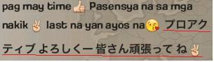 ふぃりぴーな日本語