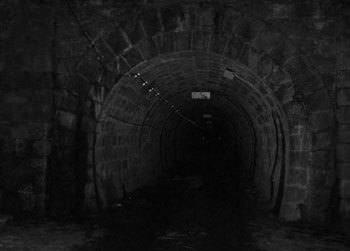 馬鹿「霊なんて居ない」ワイ「ならこのトンネルで一晩過ごしたら3000円やるよね?」馬鹿「嫌です…」