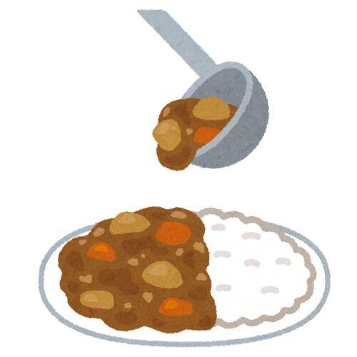 貧乏人「カレーに入れるのは豚でしょw」バカ「牛でしょw」変人「鶏でしょ」←はぁ~ヤレヤレ