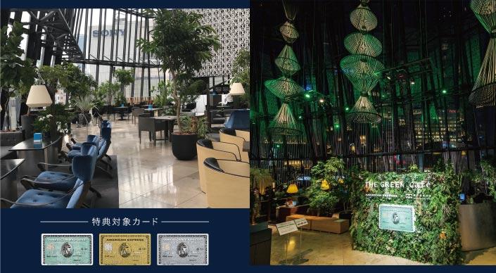greencafe_L1hero_705-388