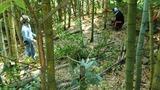 森林公園整備IMG_20210711_125934
