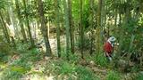 森林公園整備IMG_20210711_125900