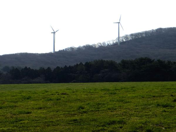 風車コラム3基目:本州最北端の地、大間へ。そして岩屋へ。