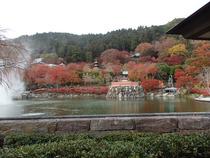 勝尾寺 ①