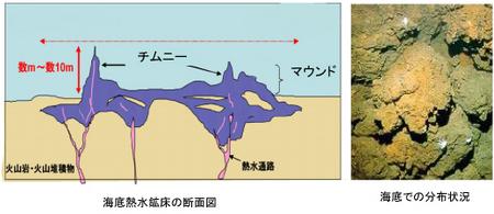 海底熱水鉱床断面図