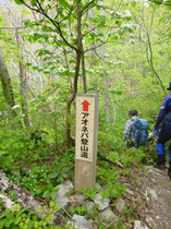 ③-2 青粘登山道