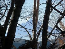 ⑥樹木の間から富士山