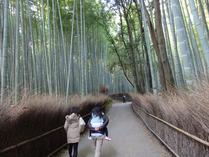 ③天龍寺・北側の竹林