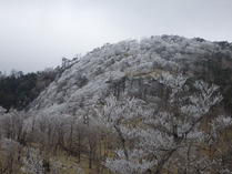 ⑤-2 樹氷