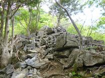 竜ヶ岳 1