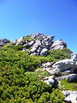 仙丈ケ岳に向かう登山道(岩壁)