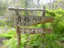 ③-1 青粘登山口