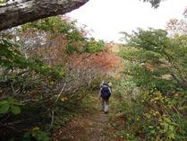 3-①部子山の紅葉