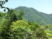 百里ヶ岳 2