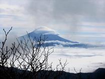 ⑪-2 富士山