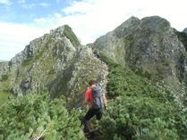 ②-6 登山道