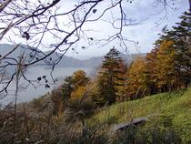 ㉓中禅寺湖を眺めながら・・
