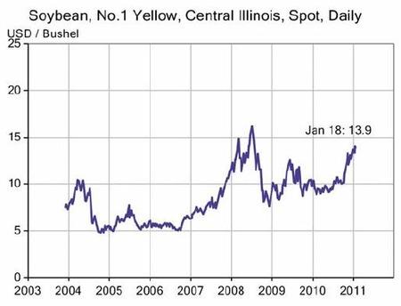 Soybean_20110120