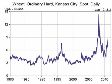 Wheat_20110120