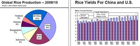 Rice_20110120_2