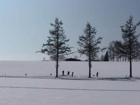 立入禁止のロープを越えて畑に侵入する4人組の韓国人
