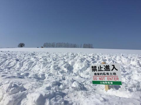 雪上に残された人間の醜い足跡④