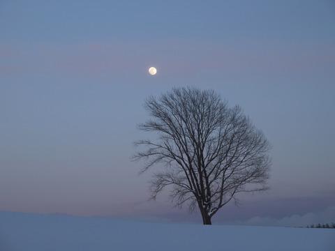 静かな夕暮