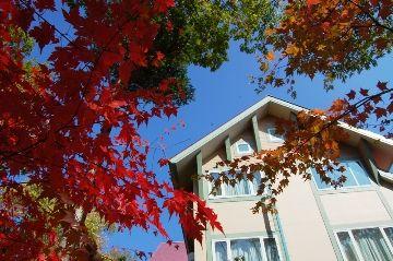 今日の草津温泉は・・・真っ盛り!紅葉!