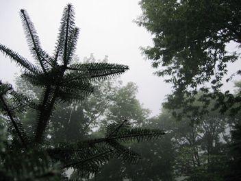 今日の草津温泉は・・・霧雨