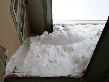 大雪!!(>_<)