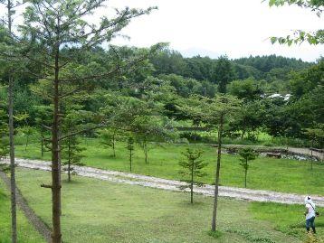 今日の草津温泉は…草刈り