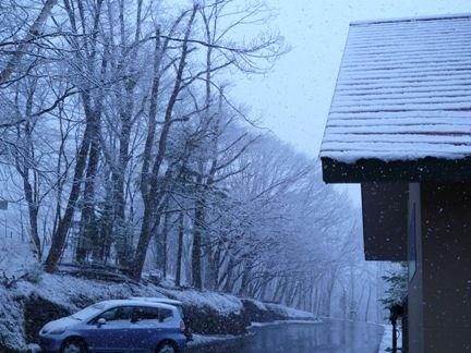 ゆ・ゆ・雪っ?!