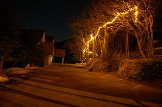 夜の丘の上