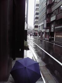 20091211雨