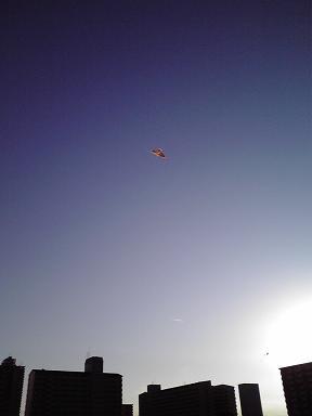 20100110凧揚げ