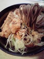 201001221かき揚げちくわ蕎麦