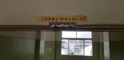 東渕江小2