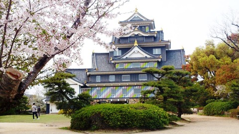 岡山城 ポップ 桜DSC_1930 - コピー のコピー